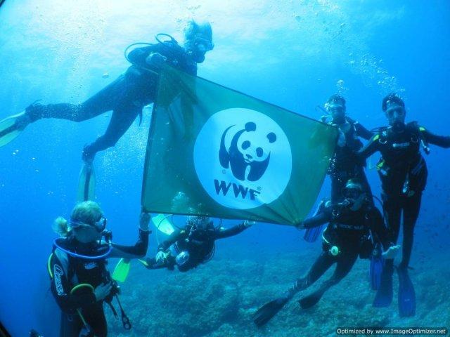 WWF_in_marine_reserve