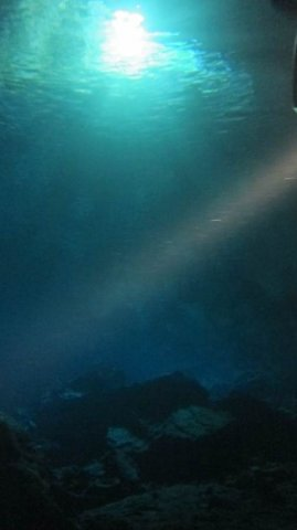 phoca_thumb_l_light_penetrating_cave-105