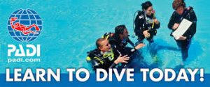 Open water diver certification course